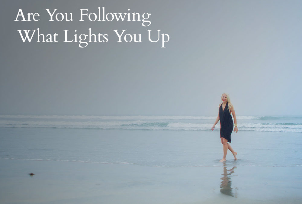 Are You Following What Lights You Up